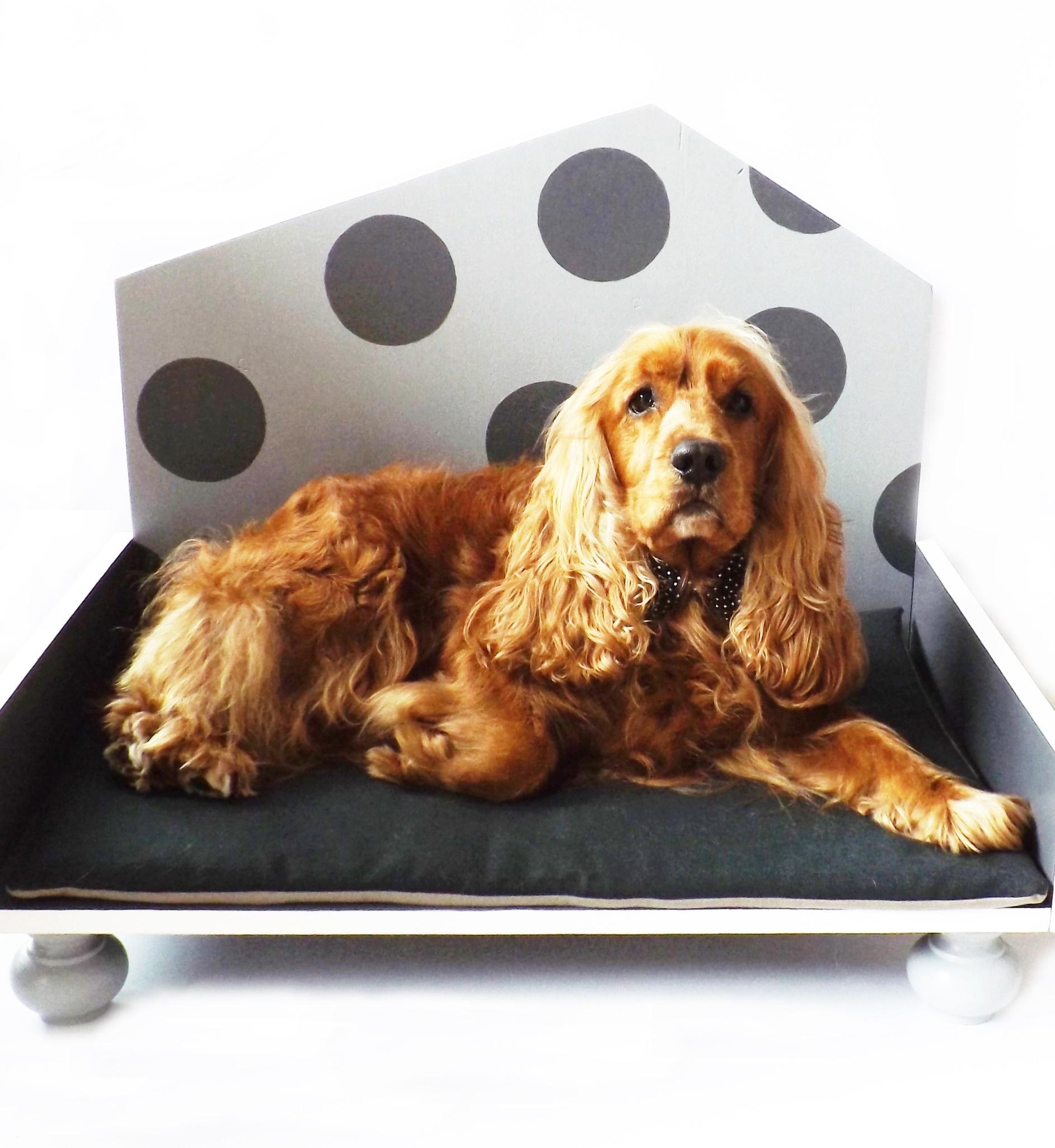 Cucce Design Per Cani cuccia di design in legno per gatti e cani di taglia media _ color grigio  chiaro e grigio antracite